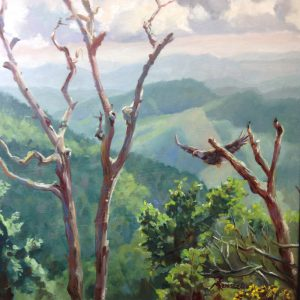 Pisgah Mountain View w Eagle